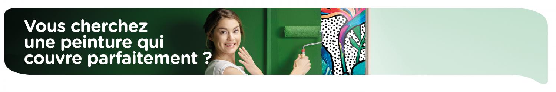 Peignez vos murs intériers avec des peintures de qualité