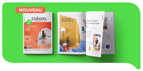 Avez-vous besoin d'inspiration intérieure ou des conseils de couleur et de peinture ? Demandez maintenant votre magazine colora gratuite