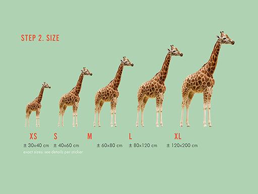 Étape 2 : sélectionnez la taille