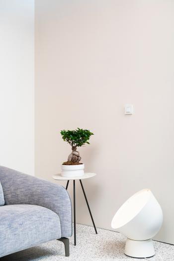 Utilisez des couleurs douces pour vous détendre complètement dans votre salon.