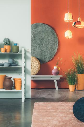 Couleurs de peinture naturelles dans votre salon