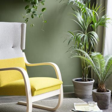 Peignez votre mur en vert