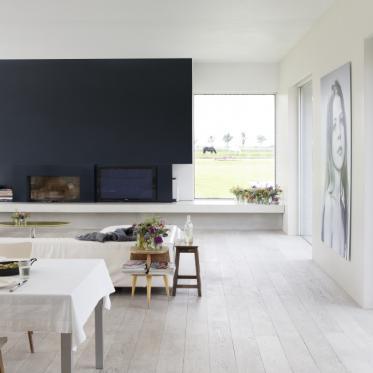 Peindre l'espace de vie en blanc et bleu foncé