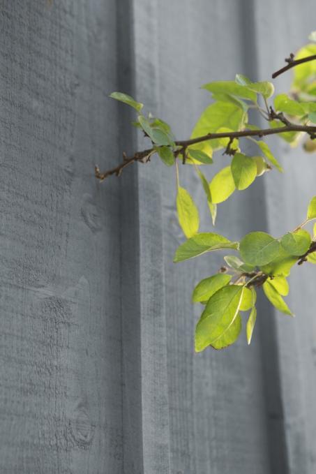 Inspiration - Peindre le paroi en bois extérieur en gris