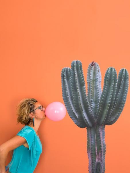 Autocollant cactus