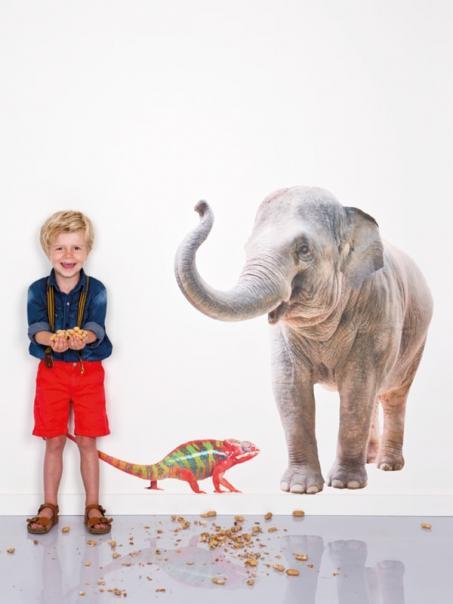 Autocollant mur éléphant et caméléon