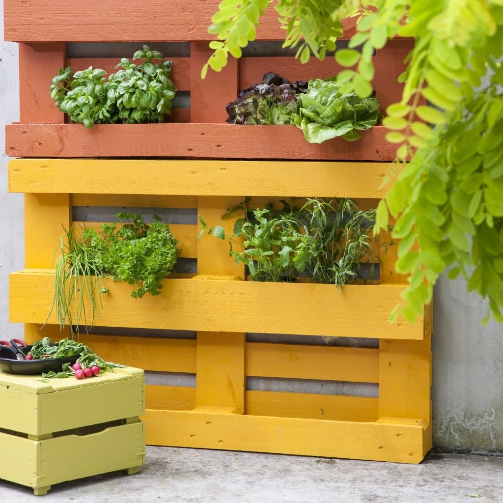 Un jardin d'herbes aromatiques avec un surplus de bois