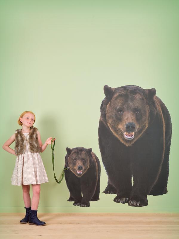 Autocollant murale avec dessins colorés imprimés ours