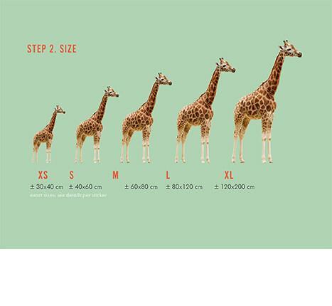 Hoe kies je een muursticker: stap 2, formaat