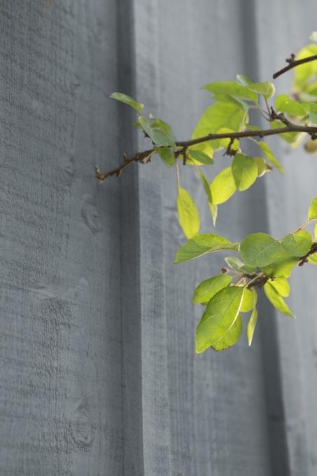 Inspiratie: buitenmuur grijs schilderen