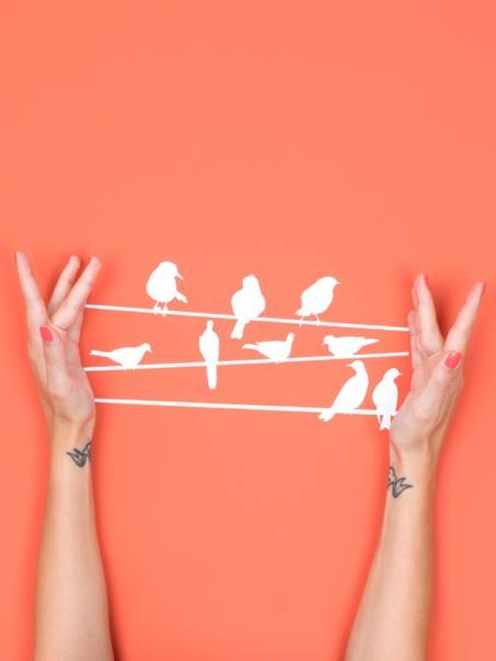 Muursticker vogels op draad